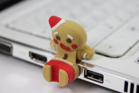 2GB InnoDisk i-Qute Gingerbread Man USB2.0 Flash Drive'