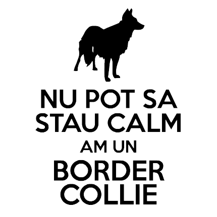 Stau Calm Am un Border Collie