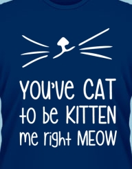 You've Cat to be Kitten Me!'