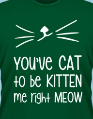 You've Cat to be Kitten Me!